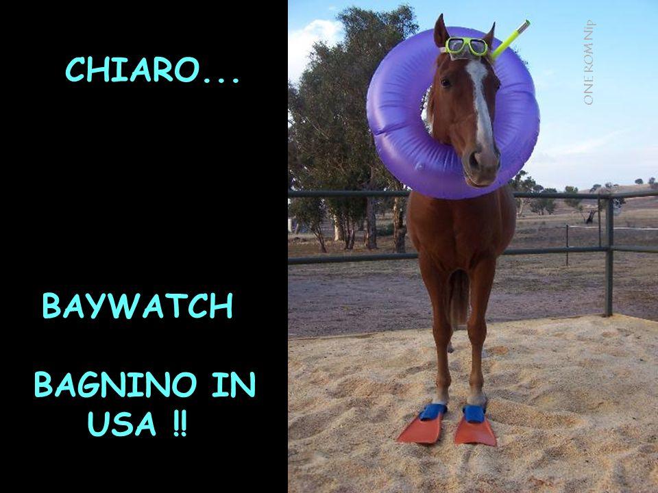 CHIARO... BAYWATCH BAGNINO IN USA !! ONE ROM Nip
