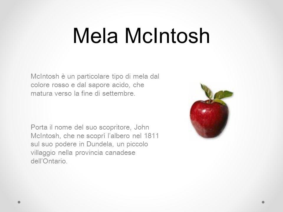 Mela McIntosh McIntosh è un particolare tipo di mela dal colore rosso e dal sapore acido, che matura verso la fine di settembre. Porta il nome del suo