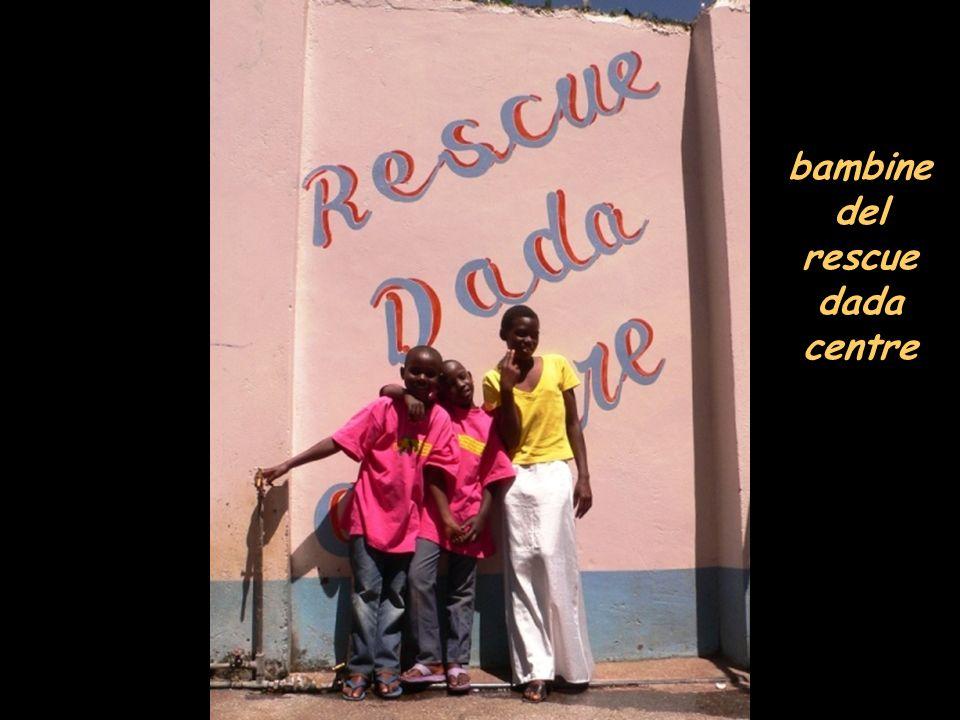 rescue dada centre