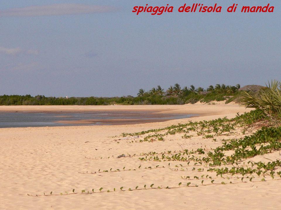 spiaggia dellisola di manda