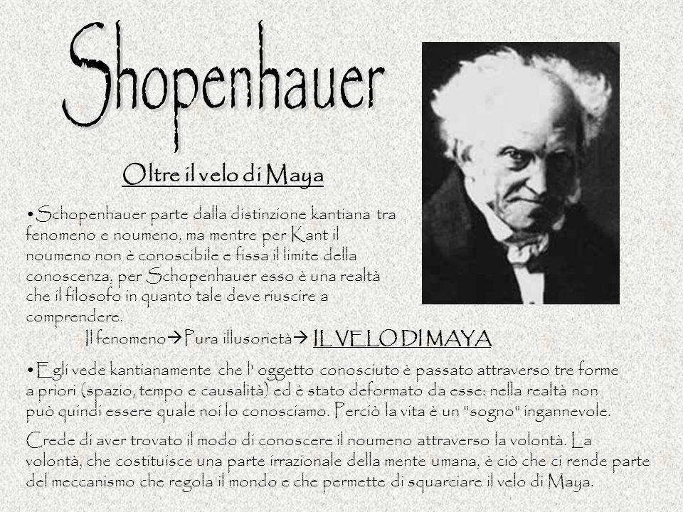 Oltre il velo di Maya Schopenhauer parte dalla distinzione kantiana tra fenomeno e noumeno, ma mentre per Kant il noumeno non è conoscibile e fissa il