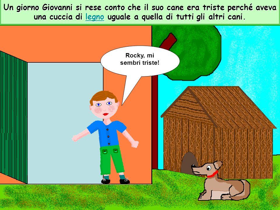 In quella casa vivevano un bambino di nome Giovanni con il suo cane Rocky.