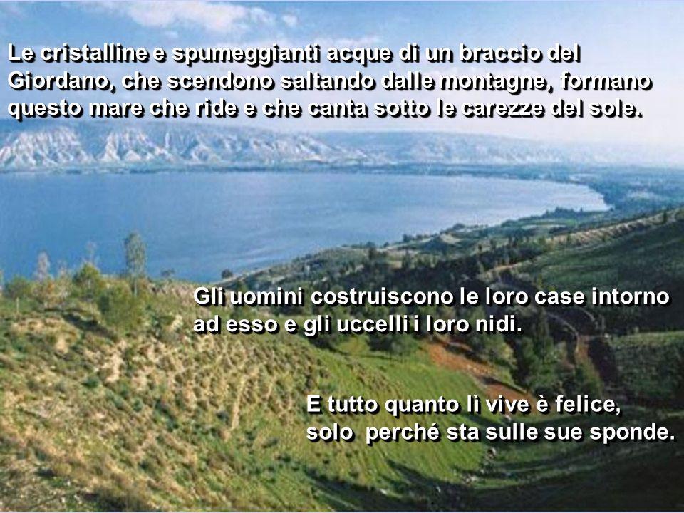 Egli amava questo mare. Ammirando le verdi colline, Vi predicò e raccontò le Sue parabole. In una valle vicina diede da mangiare a cinquemila persone