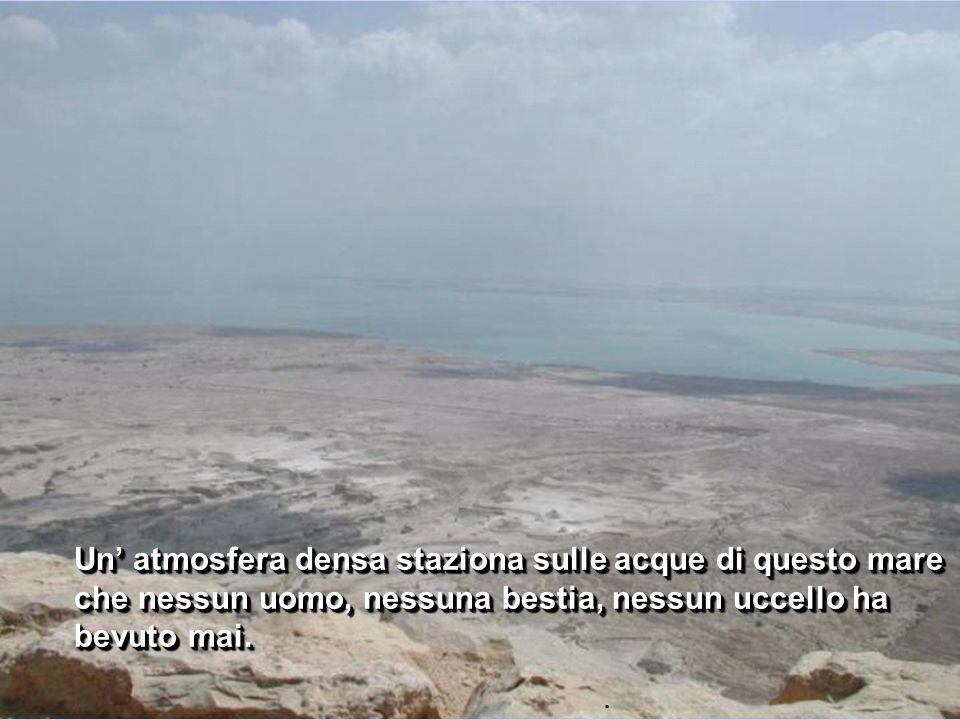 Un atmosfera densa staziona sulle acque di questo mare che nessun uomo, nessuna bestia, nessun uccello ha bevuto mai..