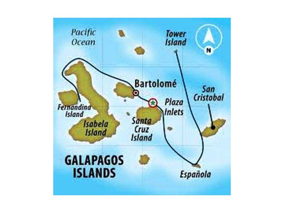 Le Galápagos (o Galapagos, nella grafia italiana), note anche come Arcipelago di Colombo, Arcipelago dell'Ecuador o Arcipelago di Colón, sono un arcip