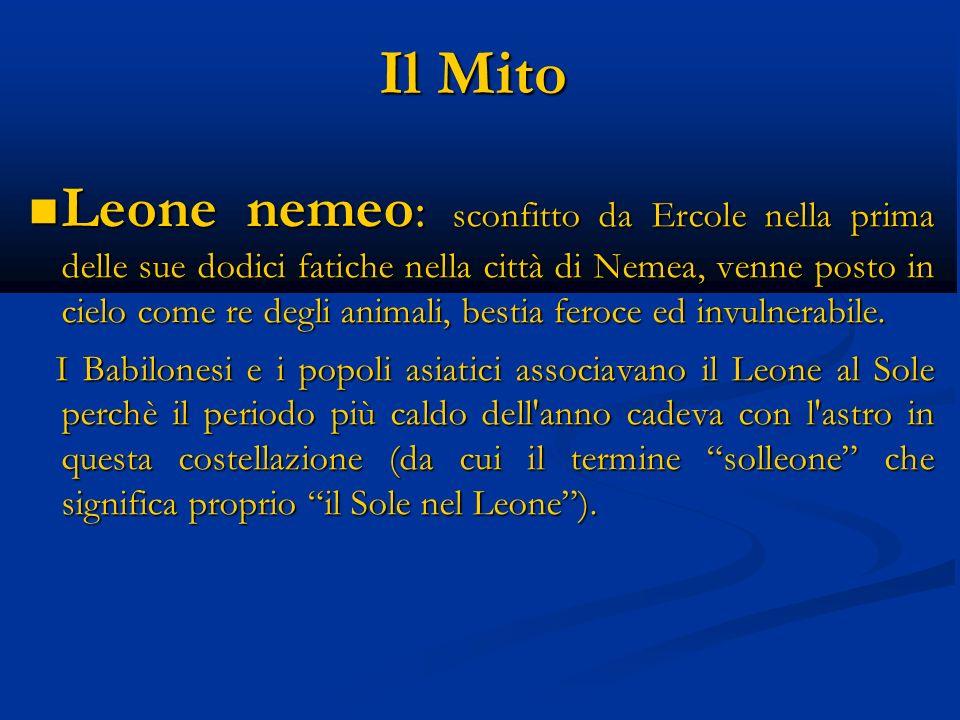 Il Mito Leone nemeo : sconfitto da Ercole nella prima delle sue dodici fatiche nella città di Nemea, venne posto in cielo come re degli animali, besti