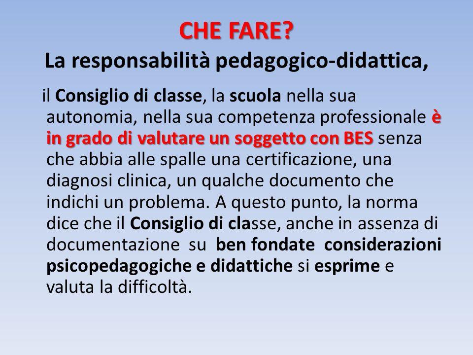 CHE FARE? CHE FARE? La responsabilità pedagogico-didattica, è in grado di valutare un soggetto con BES il Consiglio di classe, la scuola nella sua aut