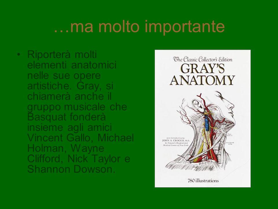 …ma molto importante Riporterà molti elementi anatomici nelle sue opere artistiche. Gray, si chiamerà anche il gruppo musicale che Basquat fonderà ins