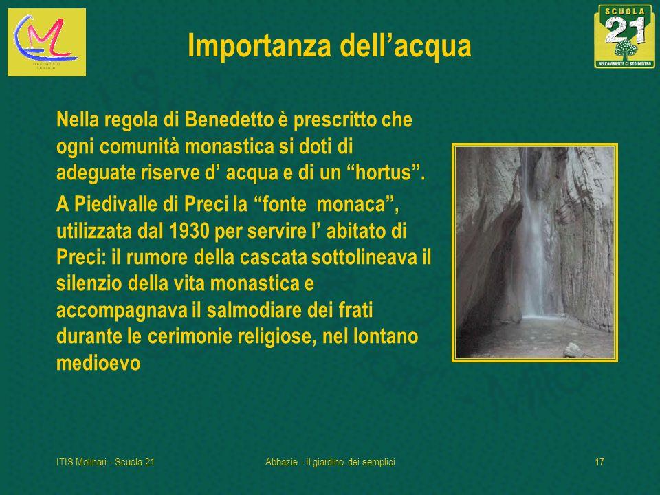 ITIS Molinari - Scuola 21Abbazie - Il giardino dei semplici17 Importanza dellacqua Nella regola di Benedetto è prescritto che ogni comunità monastica si doti di adeguate riserve d acqua e di un hortus.