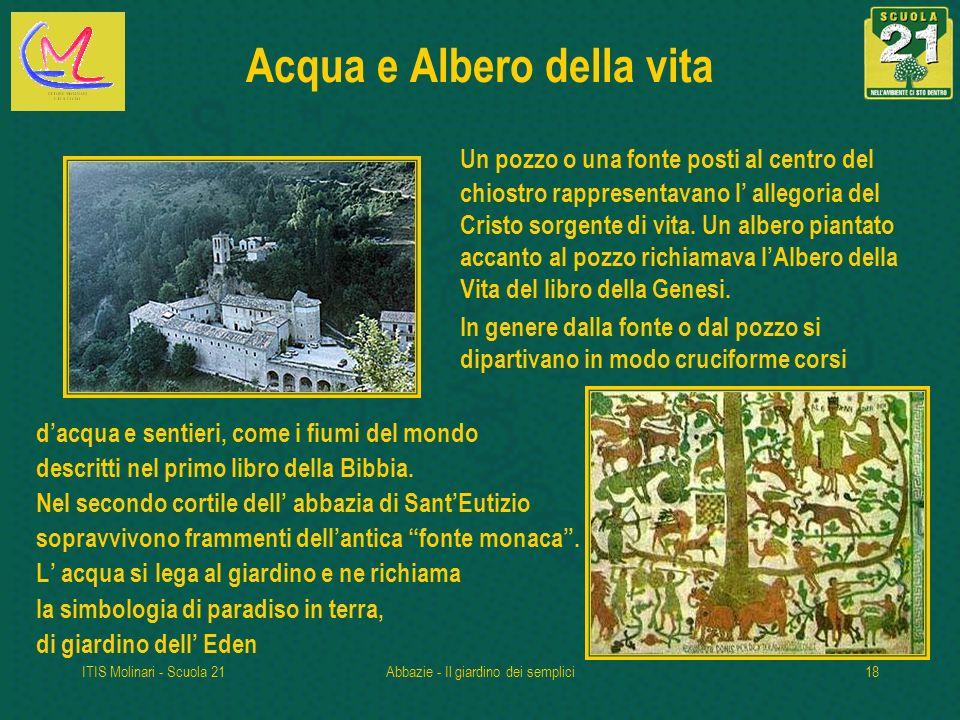 ITIS Molinari - Scuola 21Abbazie - Il giardino dei semplici18 Acqua e Albero della vita Un pozzo o una fonte posti al centro del chiostro rappresentavano l allegoria del Cristo sorgente di vita.