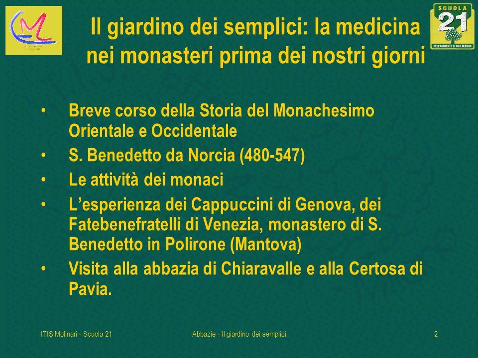 ITIS Molinari - Scuola 21Abbazie - Il giardino dei semplici33 Certosa di Pavia Sul retro della chiesa un alto muro di cinta delimita i terreni dove vengono coltivate erbe medicinali.