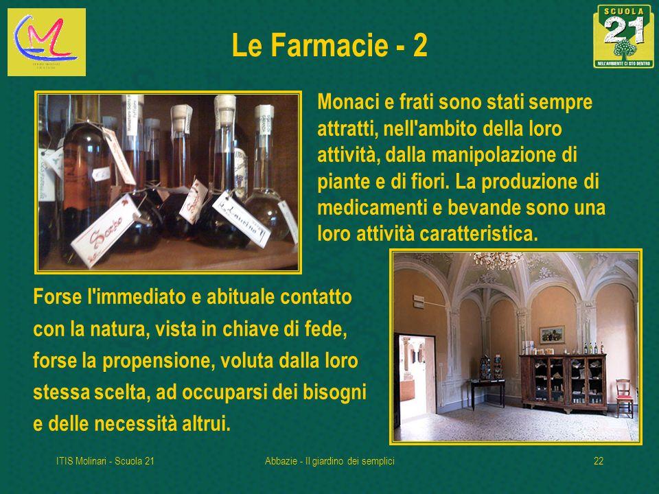 ITIS Molinari - Scuola 21Abbazie - Il giardino dei semplici22 Le Farmacie - 2 Monaci e frati sono stati sempre attratti, nell ambito della loro attività, dalla manipolazione di piante e di fiori.