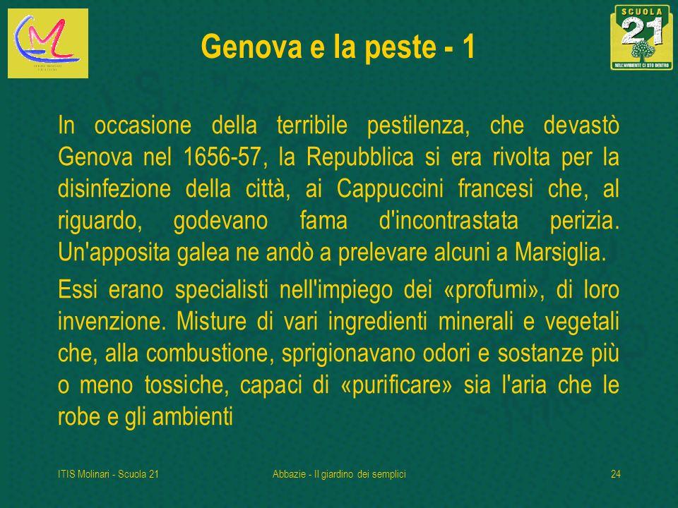 ITIS Molinari - Scuola 21Abbazie - Il giardino dei semplici24 Genova e la peste - 1 In occasione della terribile pestilenza, che devastò Genova nel 1656-57, la Repubblica si era rivolta per la disinfezione della città, ai Cappuccini francesi che, al riguardo, godevano fama d incontrastata perizia.