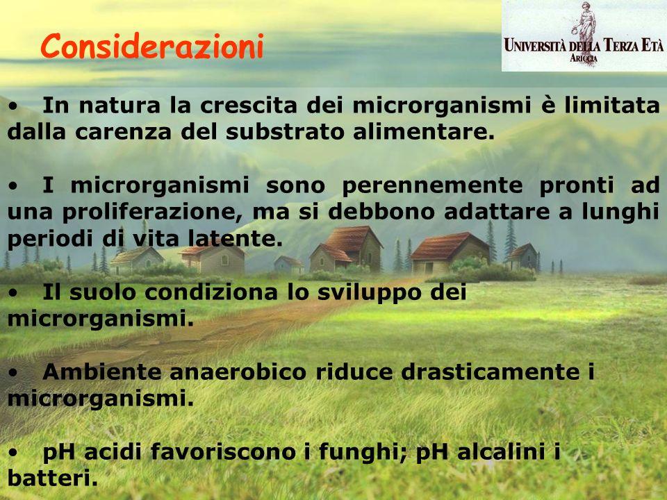 In natura la crescita dei microrganismi è limitata dalla carenza del substrato alimentare. I microrganismi sono perennemente pronti ad una proliferazi