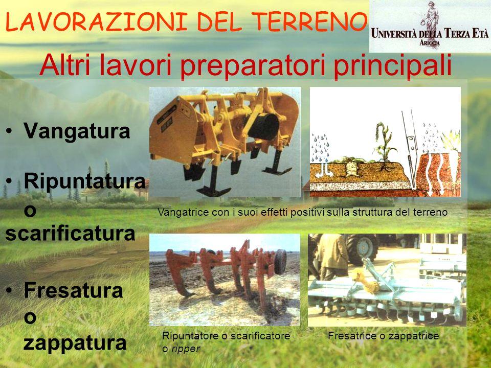 Altri lavori preparatori principali Vangatura Ripuntatura o scarificatura Fresatura o zappatura Vangatrice con i suoi effetti positivi sulla struttura