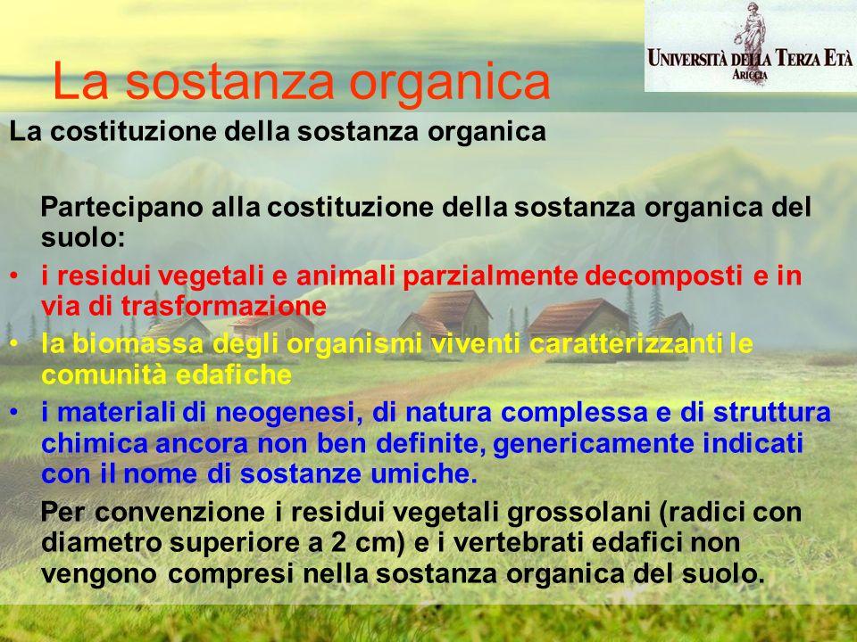 La sostanza organica La costituzione della sostanza organica Partecipano alla costituzione della sostanza organica del suolo: i residui vegetali e ani