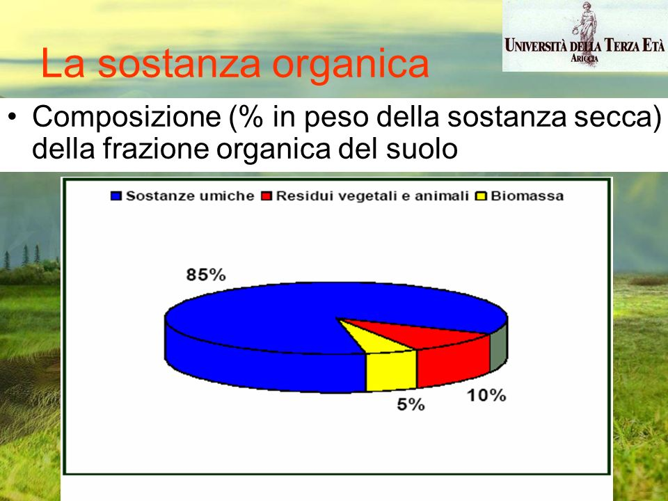 Composizione (% in peso della sostanza secca) della frazione organica del suolo La sostanza organica