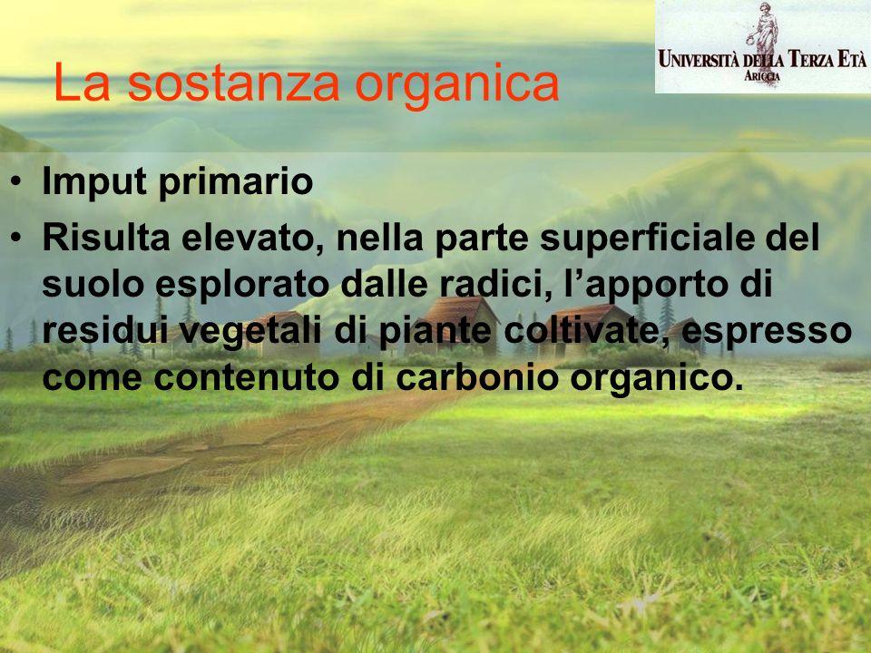 Imput primario Risulta elevato, nella parte superficiale del suolo esplorato dalle radici, lapporto di residui vegetali di piante coltivate, espresso