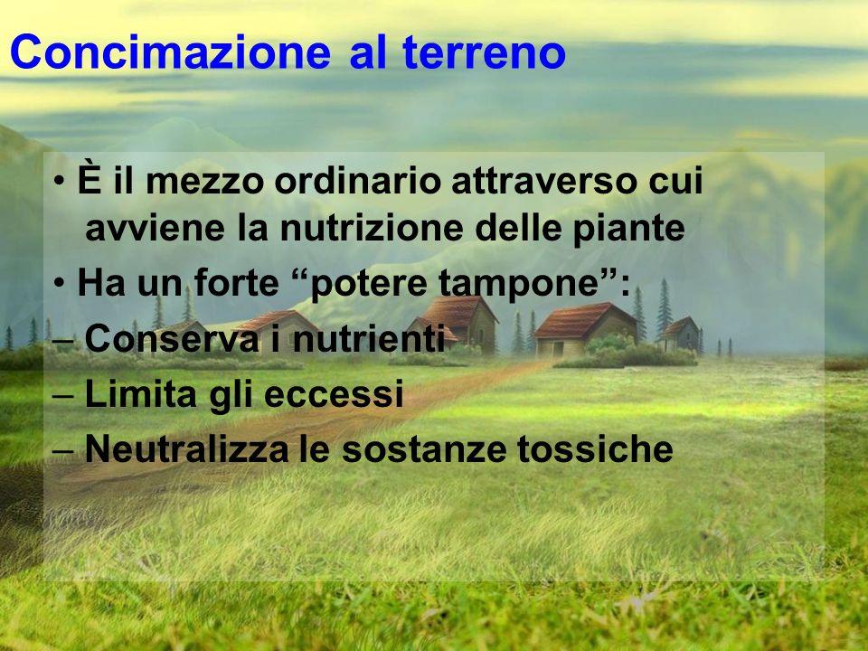 Concimazione al terreno È il mezzo ordinario attraverso cui avviene la nutrizione delle piante Ha un forte potere tampone: – Conserva i nutrienti – Li