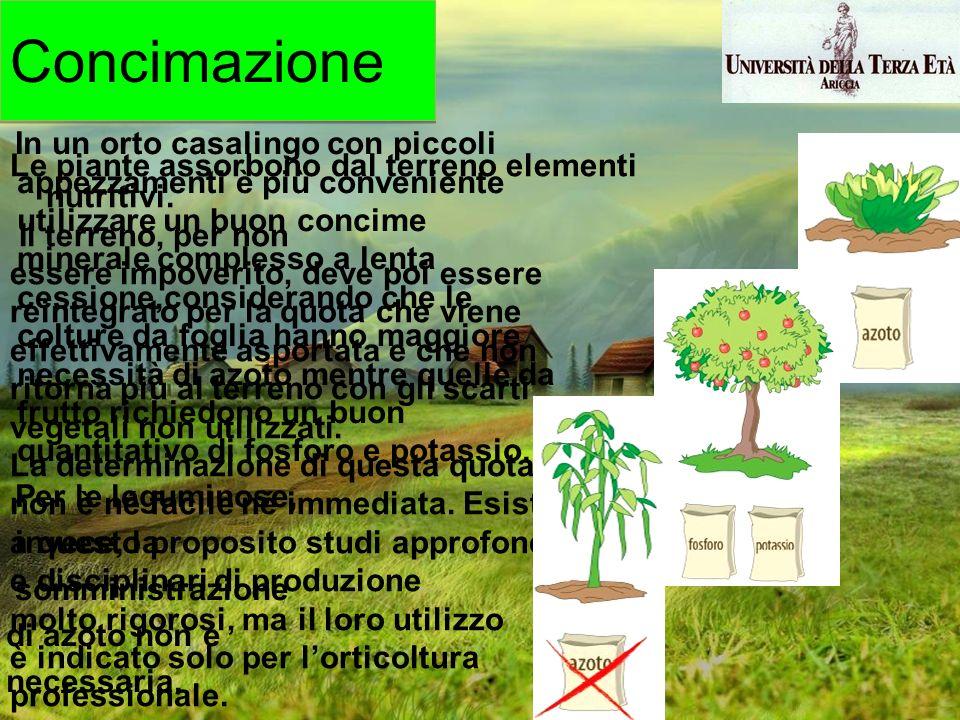 Le piante assorbono dal terreno elementi nutritivi. Il terreno, per non essere impoverito, deve poi essere reintegrato per la quota che viene effettiv