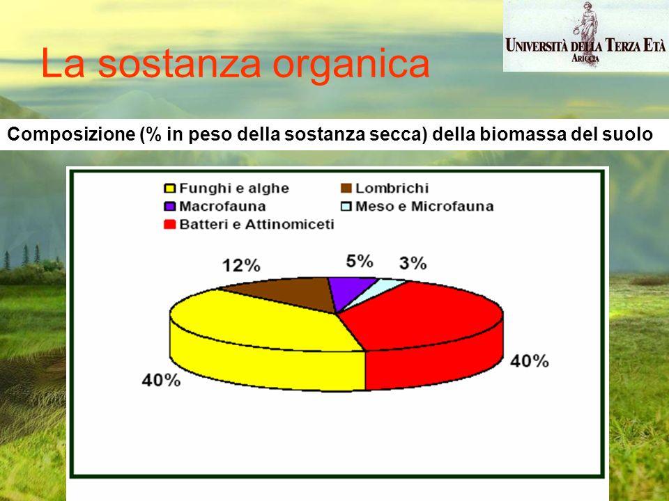Composizione (% in peso della sostanza secca) della biomassa del suolo La sostanza organica