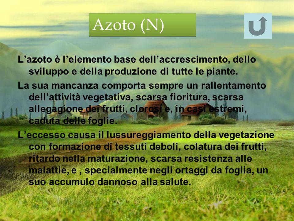 Lazoto è lelemento base dellaccrescimento, dello sviluppo e della produzione di tutte le piante. La sua mancanza comporta sempre un rallentamento dell