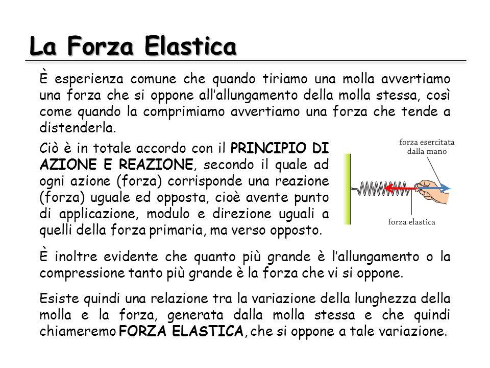 La Forza Elastica È esperienza comune che quando tiriamo una molla avvertiamo una forza che si oppone allallungamento della molla stessa, così come qu