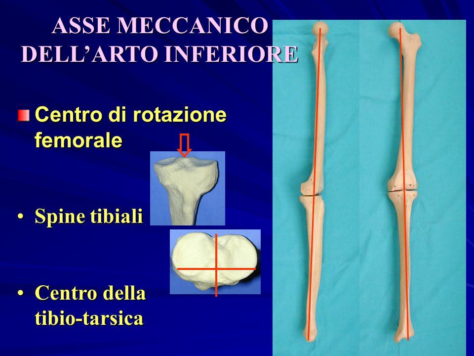ASSE MECCANICO DELLARTO INFERIORE Centro di rotazione femorale Spine tibialiSpine tibiali Centro della tibio-tarsicaCentro della tibio-tarsica