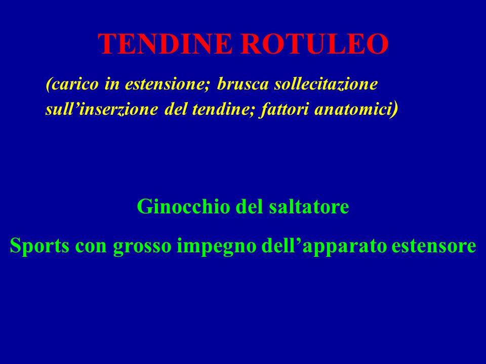 TENDINE ROTULEO (carico in estensione; brusca sollecitazione sullinserzione del tendine; fattori anatomici ) Ginocchio del saltatore Sports con grosso