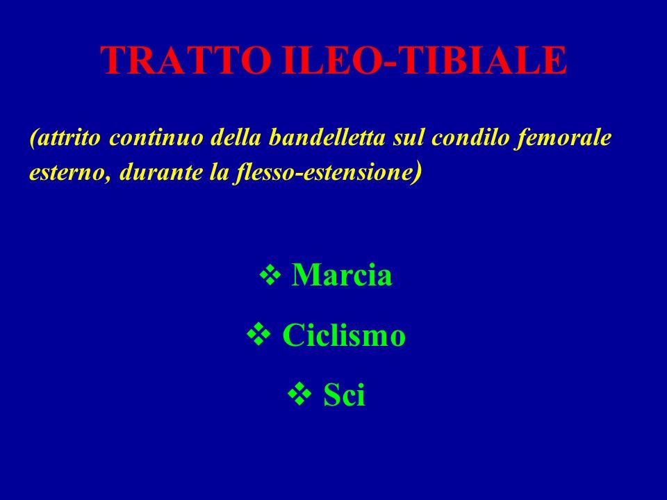 TRATTO ILEO-TIBIALE (attrito continuo della bandelletta sul condilo femorale esterno, durante la flesso-estensione ) Marcia Ciclismo Sci