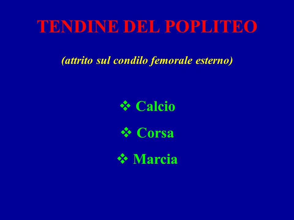 TENDINE DEL POPLITEO (attrito sul condilo femorale esterno) Calcio Corsa Marcia