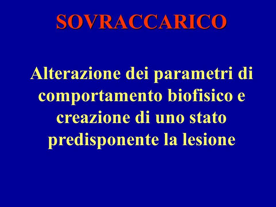 Alterazione dei parametri di comportamento biofisico e creazione di uno stato predisponente la lesione SOVRACCARICO