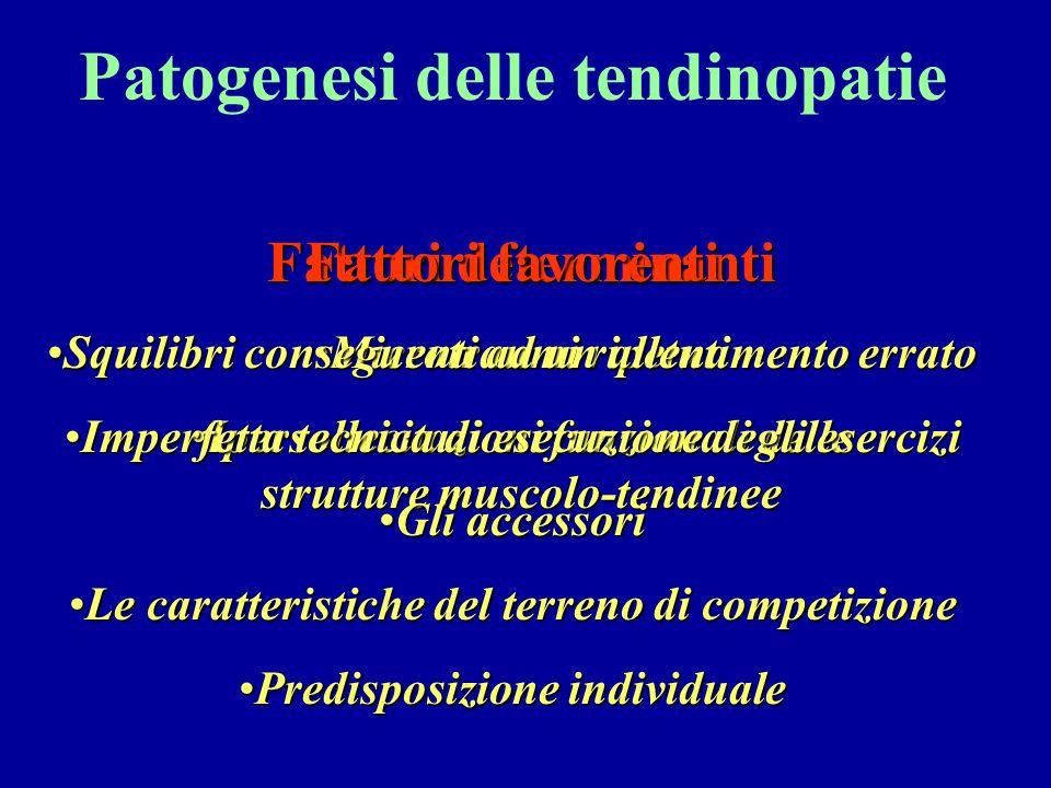 Patogenesi delle tendinopatie Fattori determinanti MicrotraumiMicrotraumi ripetuti IpersollecitazioniIpersollecitazioni funzionali delle strutture mus