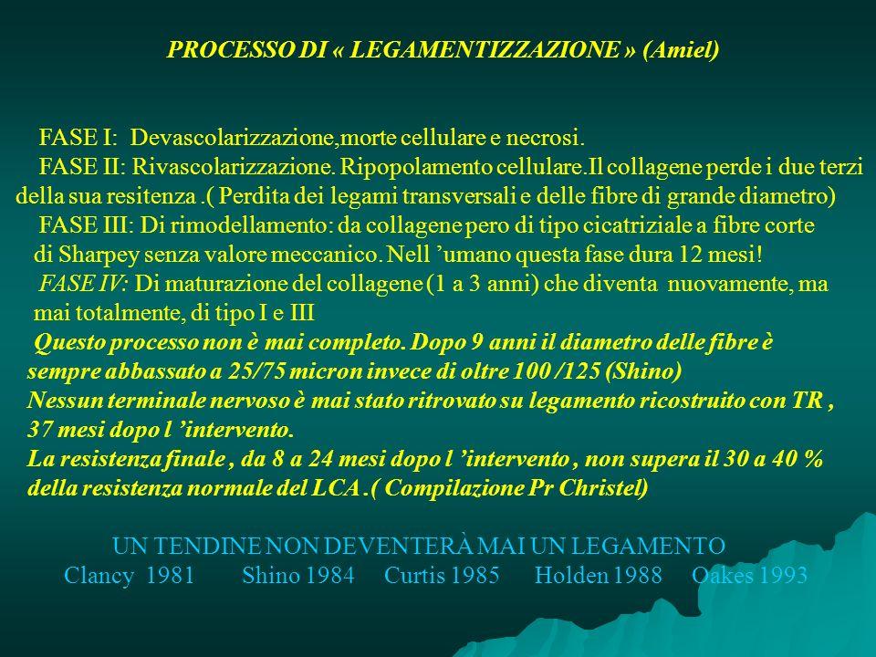 PROCESSO DI « LEGAMENTIZZAZIONE » (Amiel) FASE I: Devascolarizzazione,morte cellulare e necrosi. FASE II: Rivascolarizzazione. Ripopolamento cellulare