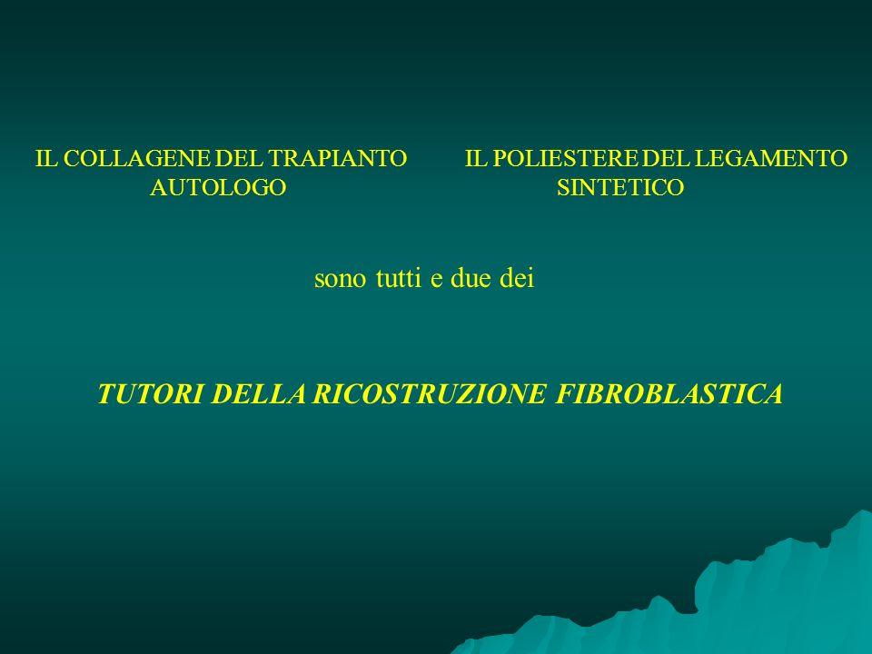 IL COLLAGENE DEL TRAPIANTO IL POLIESTERE DEL LEGAMENTO AUTOLOGO SINTETICO sono tutti e due dei TUTORI DELLA RICOSTRUZIONE FIBROBLASTICA