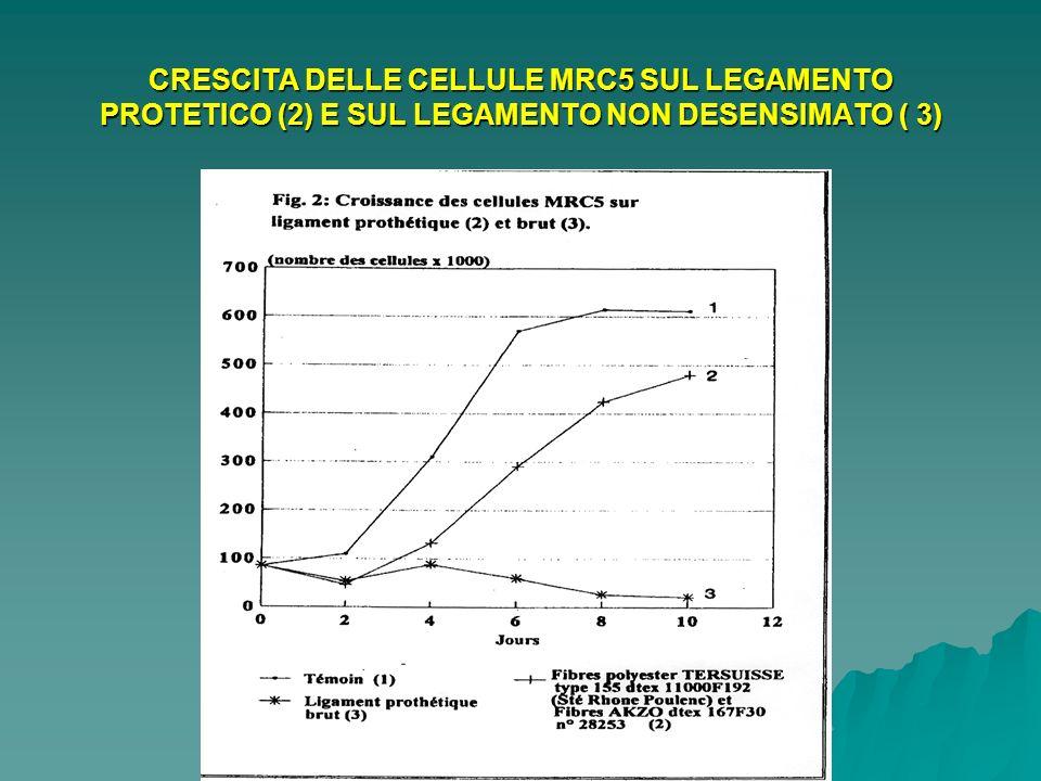 Legamento LARS - Revisione a 6 mesi - Notare la vascolarizzazione - (Pr CERULLI)