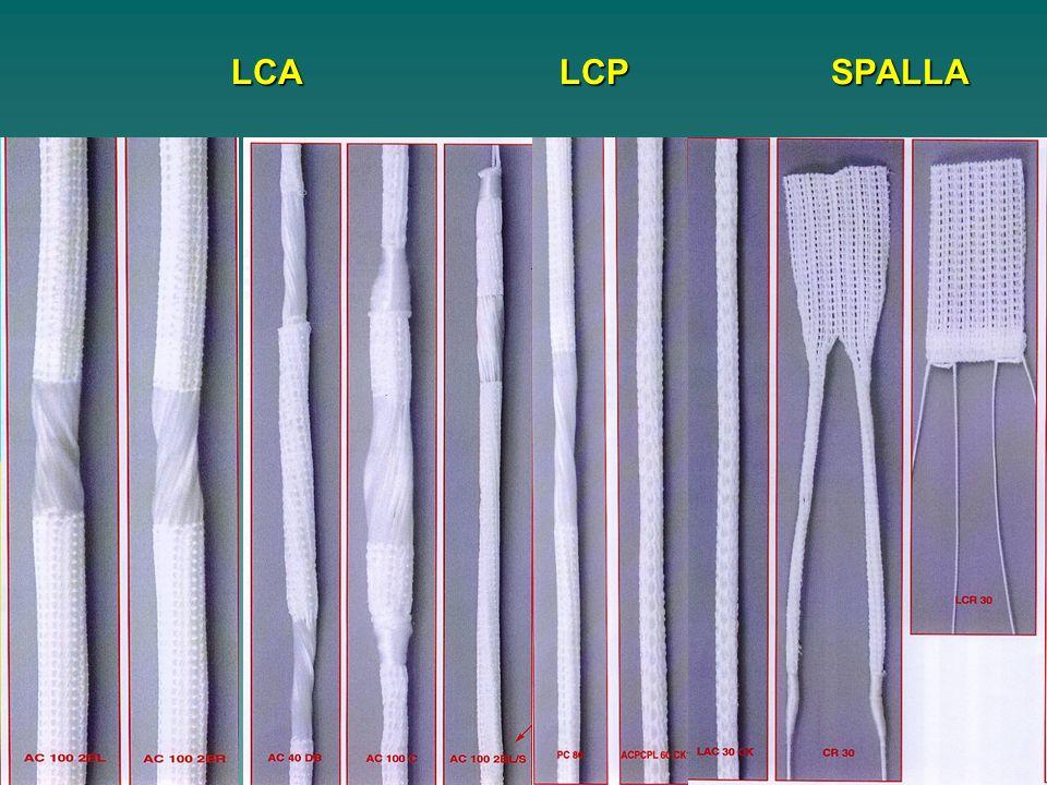 Catene polipeptidiche di glycina alanina sérina della seta, strutturate in foglietti béta