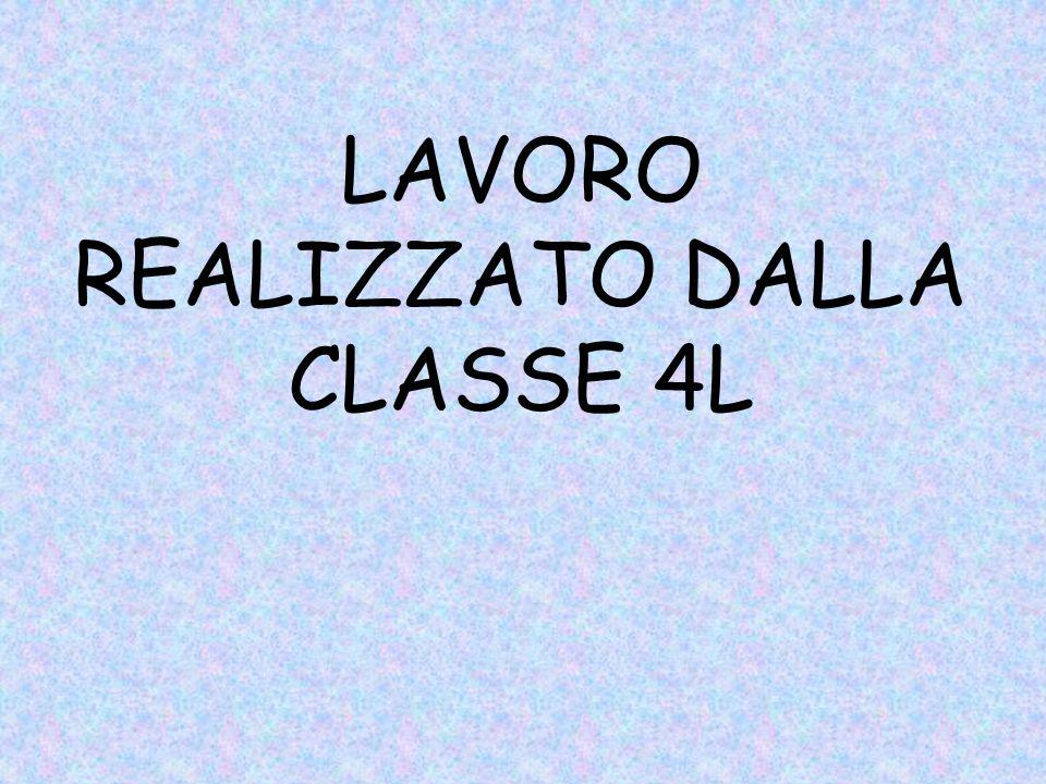 LAVORO REALIZZATO DALLA CLASSE 4L