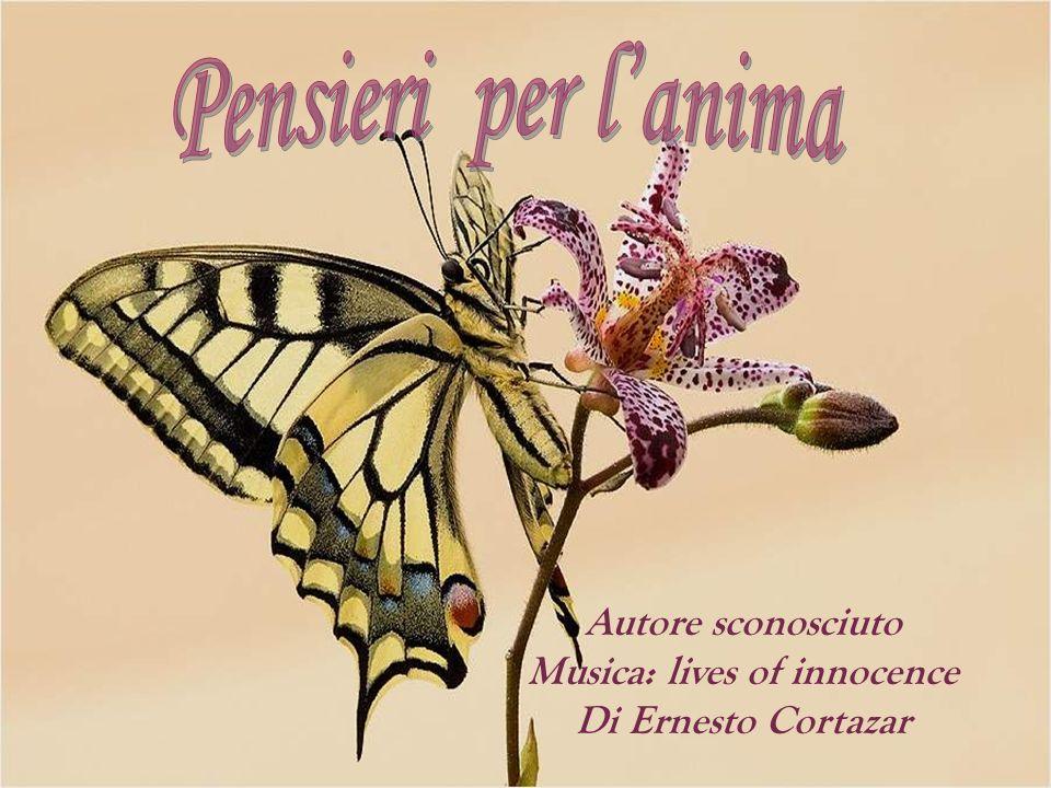 Autore sconosciuto Musica: lives of innocence Di Ernesto Cortazar