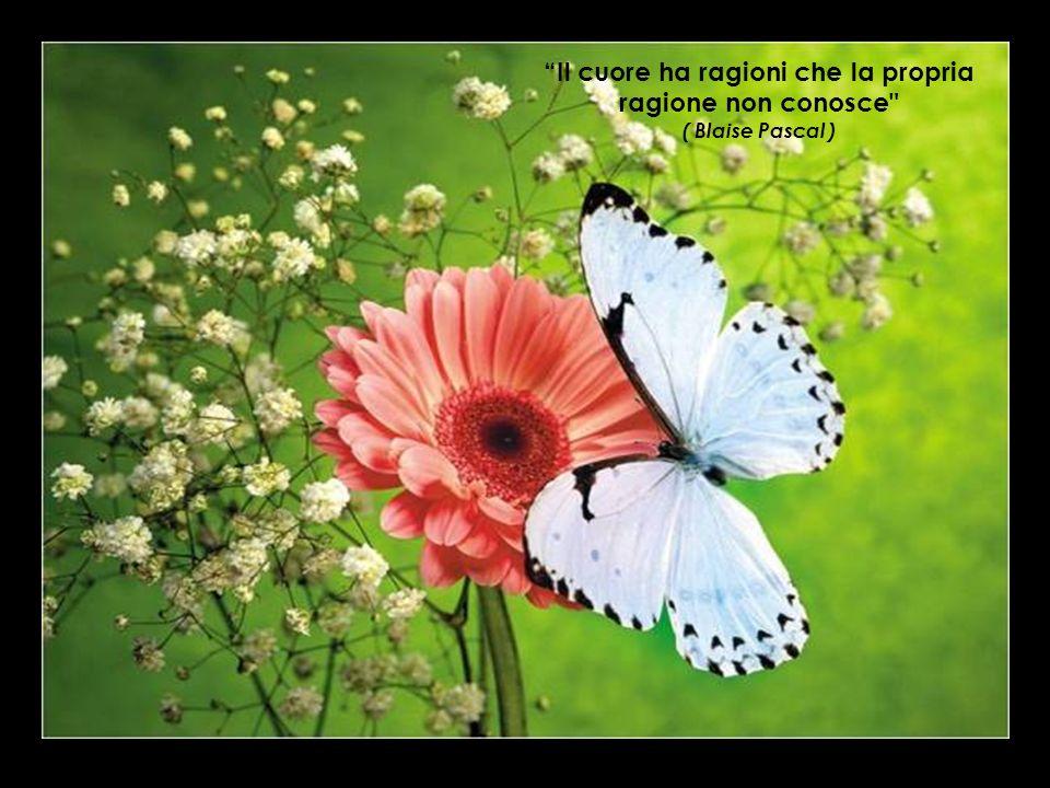 Il cuore ha ragioni che la propria ragione non conosce ( Blaise Pascal )