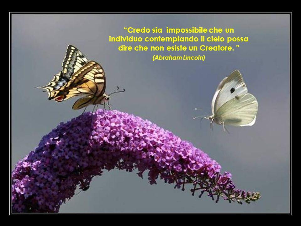 Credo sia impossibile che un individuo contemplando il cielo possa dire che non esiste un Creatore.