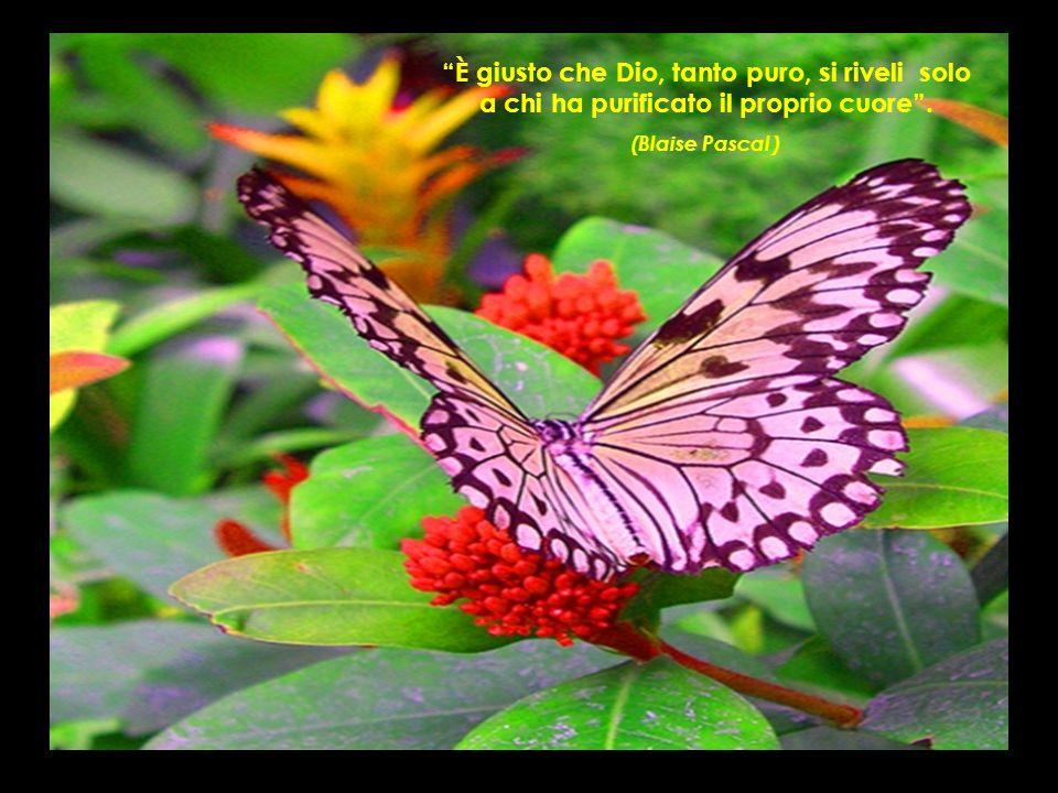 È giusto che Dio, tanto puro, si riveli solo a chi ha purificato il proprio cuore. (Blaise Pascal )