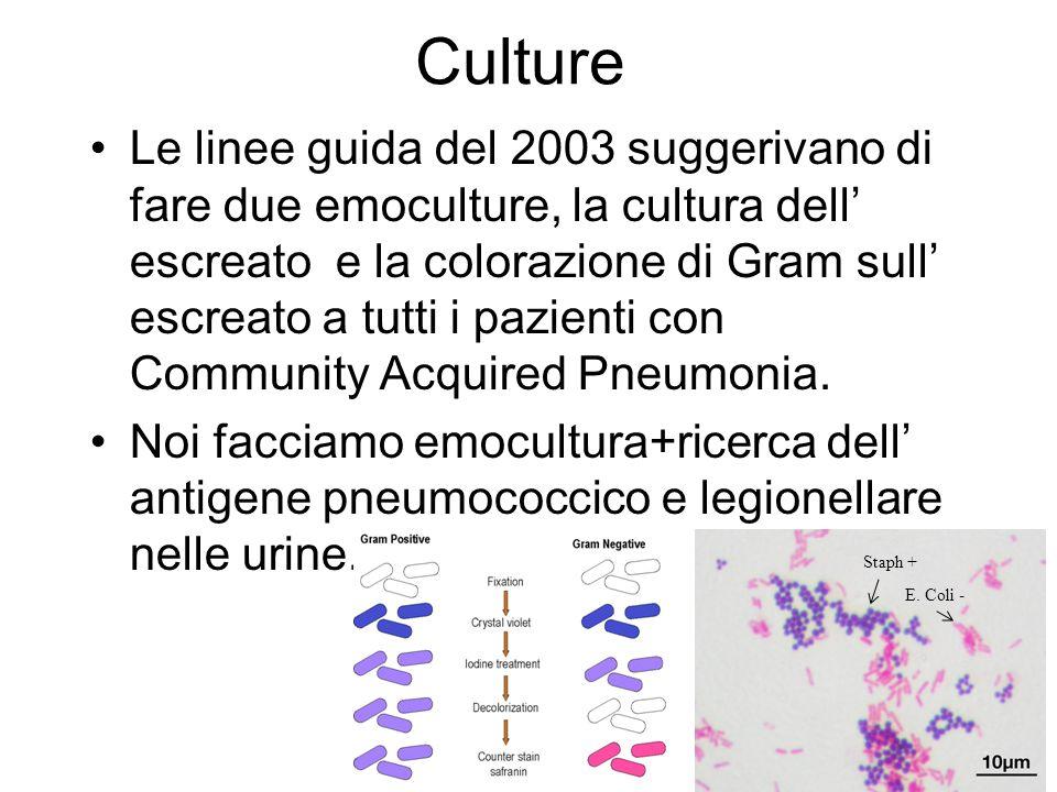Culture Le linee guida del 2003 suggerivano di fare due emoculture, la cultura dell escreato e la colorazione di Gram sull escreato a tutti i pazienti con Community Acquired Pneumonia.