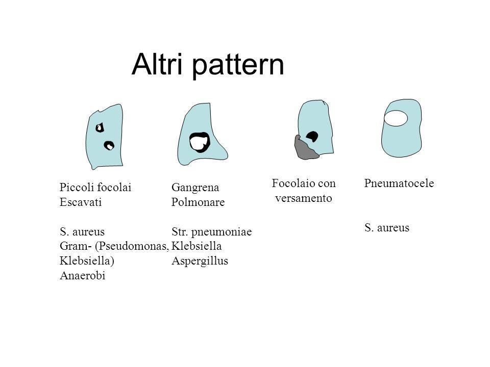 Altri pattern Piccoli focolai Escavati S.