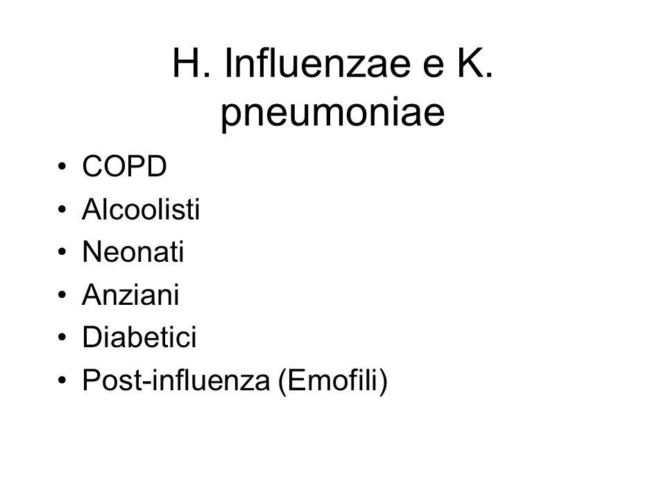 H. Influenzae e K. pneumoniae COPD Alcoolisti Neonati Anziani Diabetici Post-influenza (Emofili)