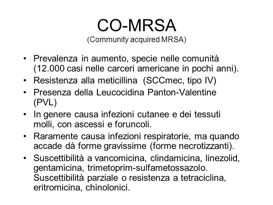 CO-MRSA (Community acquired MRSA) Prevalenza in aumento, specie nelle comunità (12.000 casi nelle carceri americane in pochi anni).