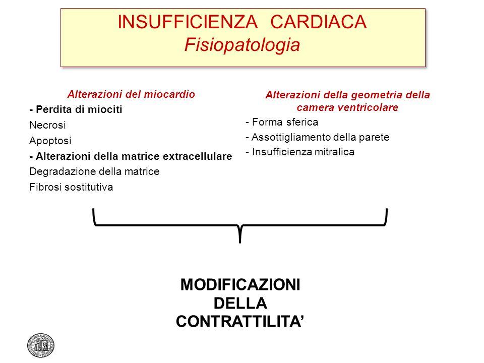 INSUFFICIENZA CARDIACA Fisiopatologia Alterazioni del miocardio - Perdita di miociti Necrosi Apoptosi - Alterazioni della matrice extracellulare Degra