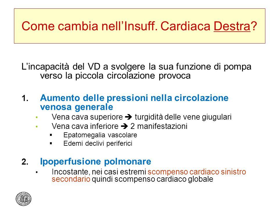 Come cambia nellInsuff. Cardiaca Destra? Lincapacità del VD a svolgere la sua funzione di pompa verso la piccola circolazione provoca 1. Aumento delle