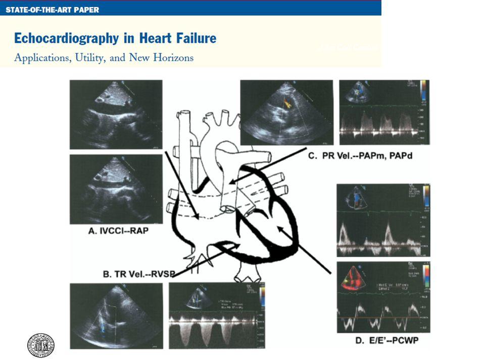 J Am Coll Cardiol 2007;50:381–96