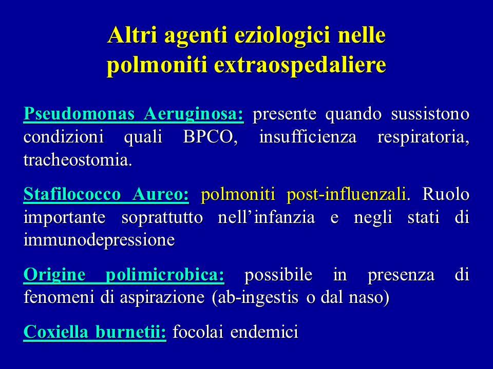 Altri agenti eziologici nelle polmoniti extraospedaliere Pseudomonas Aeruginosa: presente quando sussistono condizioni quali BPCO, insufficienza respi